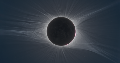 Copyright: Nicolas Lefaudeux Great American Eclipse Image